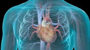 زرع جهاز تنظيم ضربات القلب / علاج إعادة التزامن القلبي 2